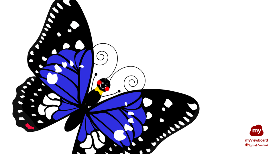 Butterflylife01-FHD-logo.png