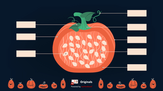 Thumbnail halloween pumpkin no text06-FHD-logo.png