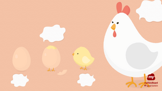 Thumbnail life cycle of a chicken02-FHD-logo.png