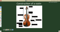 ENG Construction of a violin.png